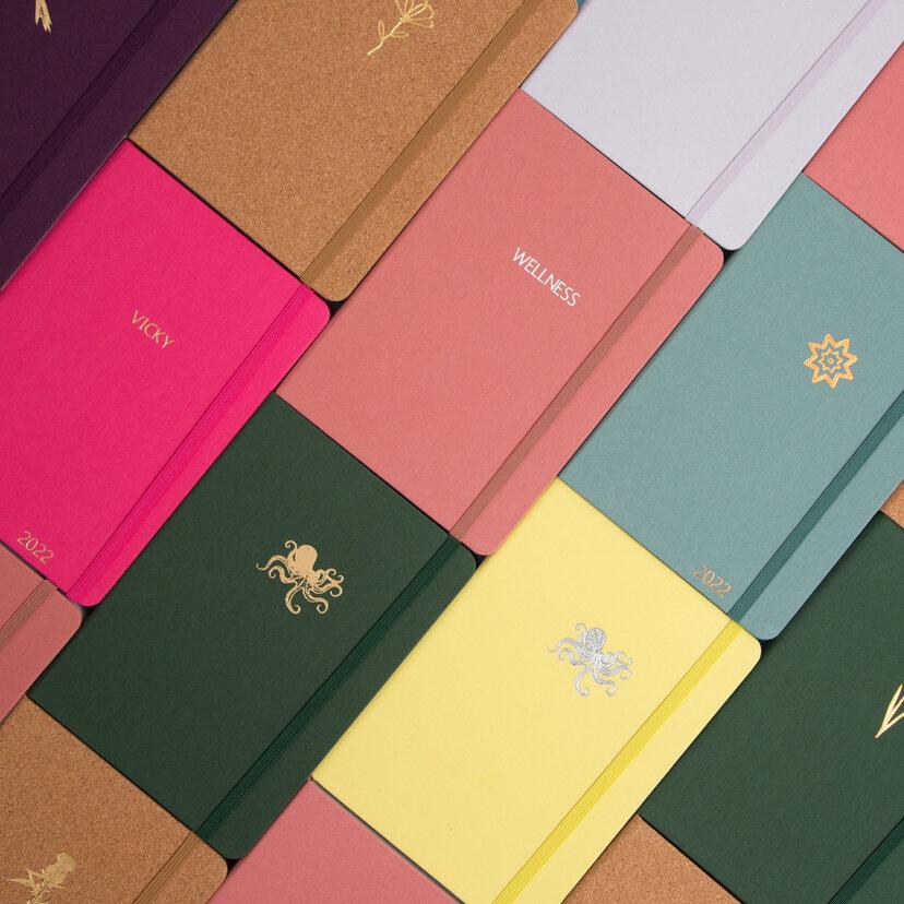 Example bullet journals